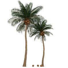 Max Palm Tree - 3D Model