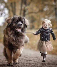 Russian Photographer Captures the Charming Connection Between Little Kids and Their Big Dogs - CHILD & PETS - Animals Pictures Dogs And Kids, Animals For Kids, Animals And Pets, Baby Animals, Dogs And Puppies, Cute Animals, Child And Dog, Corgi Puppies, Doggies