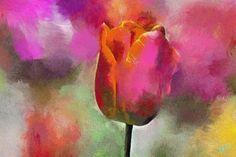Photo Art - Tulip