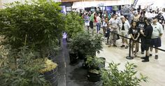 Oregon's cannabis fair celebrates growing pot industry