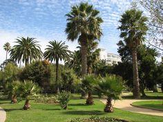 Plaza Colombia, Av. Perú #Vinadelmar #AvenidaPeru #Playa #Beach #Sea #Mar #Chile #Turismo #Casino #Naturaleza