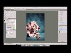 How to Change Colors of an Object in Photoshop