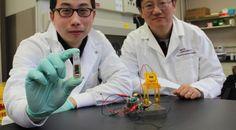 Células de combustível movidas a glicose enzimática de Zhang (Virginia Tech)