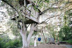 trang   kris | engagement portraits | san francisco treehouse