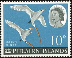 Stamps showing Red-tailed Tropicbird Phaethon rubricauda, with distribution map showing range Mutiny On The Bounty, Australia Animals, Stamp Catalogue, Old Stamps, Postage Stamp Art, Pitcairn Islands, Commonwealth, Stamp Collecting, Elizabeth Ii