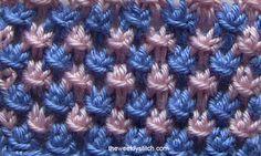 2Color Star Stitch