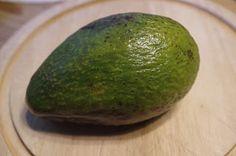 """Mr. Greens Welt: Avocado """"Fuerte"""" - vom Kern zur Pflanze"""