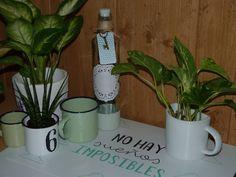 Botellas recicladas, decoradas con chalk paint, puntilla, blonda, etiquetas, etc.