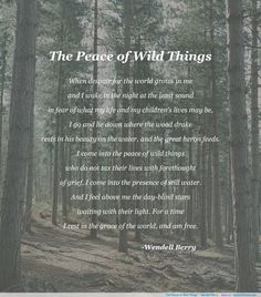 "The Peace of Wild Things"" - Wendell Berry - The best quotes ..."