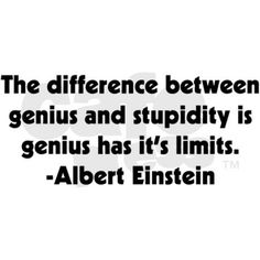 Stupidity Rectangle Magnet on CafePress.com