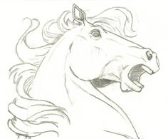 Horse Drawings | horse head surprise by ccangel33 traditional art drawings animals 2005 ...