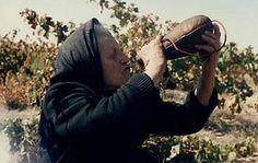 Bebiendo vino en bota (foto: M. Carmen Aparicio Muñecas). http://www.alcozar.net/etnografia/vendimia01.htm