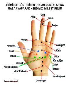 Gesundheit - - Another! Cat Exercise, Hand Therapy, Acupressure Points, Interesting Information, Diet And Nutrition, Cool Words, Health And Beauty, Healthy Life, Health Tips