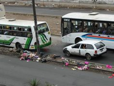 Bache de 4 años en Avenida Circunvalación, Lima