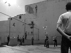 David Claerbout algiers - Palazio Grazzi Venezia - The same nice moment by thousands of cameras all around -