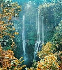 Sekumpul Water Falls Desa Sekumpul, Sawan, Buleleng, Bali Photo courtesy of @dekdeoka on #Instagram. #sekumpul #waterfalls #airterjun #bali #destinations #beautifulbali #baliwaterfalls.