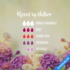 Kissed by Nature Essential Oil Diffuser Blends, Doterra Essential Oils, Oil Mix, Diffuser Recipes, Natural Cleaners, Rose Oil, Fractionated Coconut Oil, Glycerin Soap, Wild Things