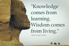 Knowledge Comes From Learning- #ADWilliams @10MillionMiler #quote #leadership #quotes RT @WisdomLeading @RitaKaratzia
