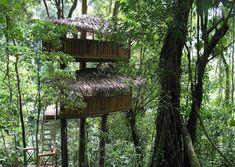 ECO EWOK TREEHOUSES: Finca Bellavista Rainforest Village