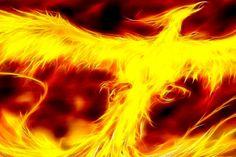 A Lenda da Fénix A fénix é um pássaro da mitologia grega. Segundo a lenda, ela teria penas brilhantes, douradas e vermelho-arroxeadas, e seria maior que uma águia. De acordo com alguns escritores gregos, a fénix vivia exatamente quinhentos anos. Outros acreditavam que seu ciclo de vida era de mais de 90 mil anos. Continue a ler em: https://www.facebook.com/gracaetoluis/