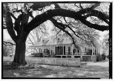7.  View of house looking from the northeast to the east front - Oakland Plantation, Route 494, Bermuda, Natchitoches Parish, LA
