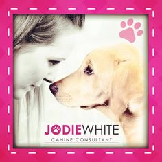The beautiful Indie - #positivedogtraining #jodiewhite www.jodiewhite.co.uk