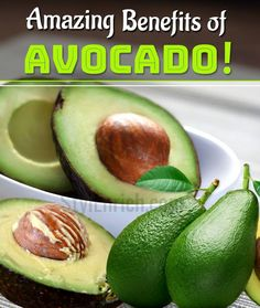 Benefits of Avocado : A Detailed View of Present Age Powerfruit