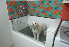 Learn how to install a dog-washing station in your Donald Gardner dream home! https://www.dongardner.com/. #WeDesignDreams