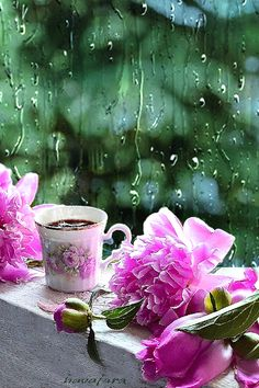 GIF by Mani Ivanov. Discover all images by Mani Ivanov. Good Morning Coffee Gif, Good Morning Images, Evening Greetings, Good Morning Greetings, Beautiful Gif, Beautiful Roses, Imagenes Gift, Beau Gif, Rain Gif