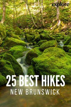 New Brunswick's 25 Best Hiking Trails - Explore Magazine New Brunswick Canada, Visit Canada, Canada Canada, Canada Trip, East Coast Road Trip, Hiking Photography, Canadian Travel, Atlantic Canada, Prince