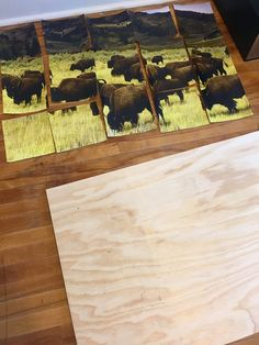 This week I have found a unique image transfer method that I would like to  share with you. I have used Rapid Resizer to enlarge an image and then  transfer it onto wood. This method is surprisingly easy and the  possibilities are endless.  I really enjoyed this craft because I was able to sho