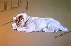 Sealyham terrier -Signed mounted 1946 Lucy Dawson Mac Sealyham terrier dog plate print Unique gift