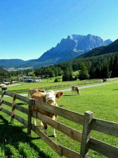 Bavaria....