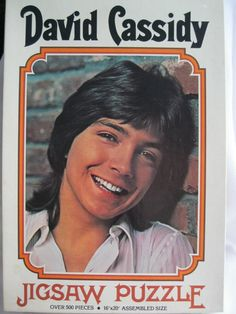 David Cassidy Jigsaw Puzzle Partridge Family by TheJunkieJunction, $25.00