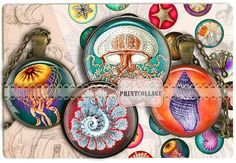 Seashell images Printable images for pendants by PrintCollage