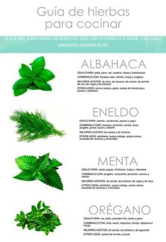 Herbs in cooking Growing Herbs Indoors, Hanging Plants, Food Hacks, Health Tips, Spices, Food And Drink, Remedies, Nutrition, Favorite Recipes