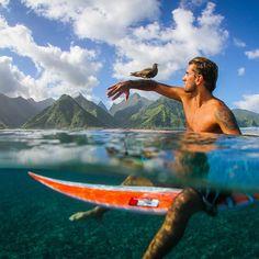 Nature Contact   Photograph by Leonardo Neves @leonevesrj  Teahupoo, Tahiti #frenchpolynesia #tahiti #underwater #surfer #surfboard #dailydozen #bird