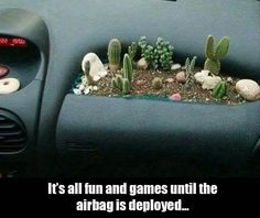 I would be more worried about braking too hard. The airbag probably moves faster than the cactus... I hope