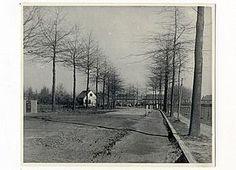 Oude foto van de Laan van Mertersem