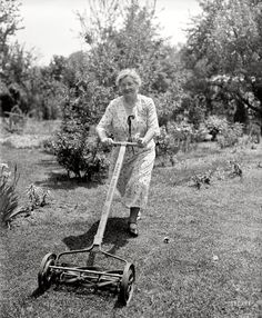 We had a mower like this!  You didn't want to wait long in between mowing!!!!