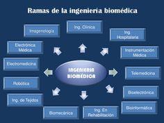 Ramas de la ingeniería biomédica<br />Ing. Clínica <br />Imagenología<br />Ing. Hospitalaria<br />Electrónica Médica<br />...