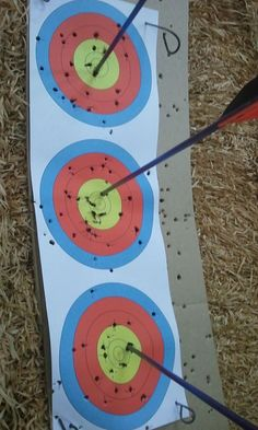 Archery to the target. Bull's eyes.