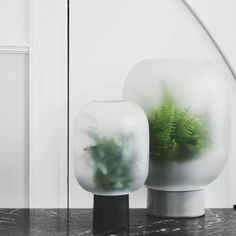 Creative DY Home Decoration for 2019 Frosted Glass Design, Indoor Water Garden, Glass Planter, Plants Are Friends, Yanko Design, Life Design, Cool Stuff, Beautiful Flowers, Color Schemes