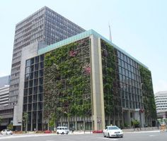 innovations in Japan... Amazing Horticultural Technology: The Future is here and it's Called Vertical Farming