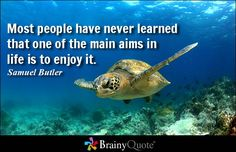 Most people have never learned that one of the main aims in life is to enjoy it. - Samuel Butler #life