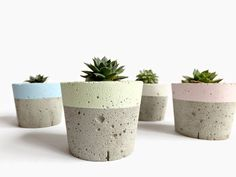 pastel Concrete Mini Planter for succulent cactus home decor modern small planter Pastel Concrete Mi