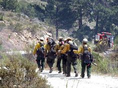 hot shots firefighters   The Dalton Hotshot crew walks to their work assignment at the 25 Mile ...