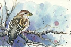 20110409_sparrow_final  STEP BY STEP watercolor painting demos... some video, Hard to separate the watercolor ones from the pastel ones