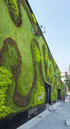 Jardín vertical en la Universidad del Claustro de Sor Juana, calle Regina, México D.