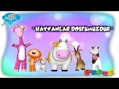 hayvanları koruma günü - YouTube